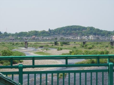 中橋からの渡良瀬橋