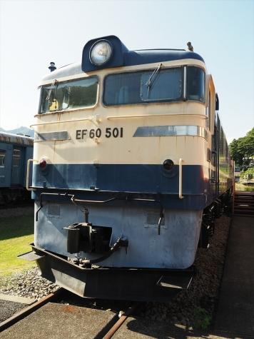 電気機関車 EF60 501【碓氷鉄道文化むら】