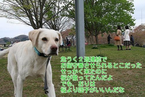 20180414_07.jpg