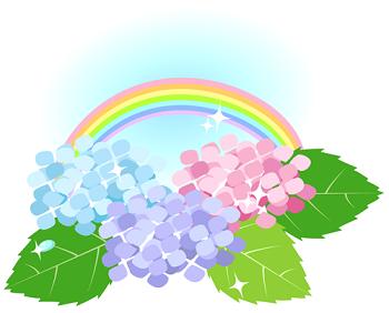 紫陽花と虹