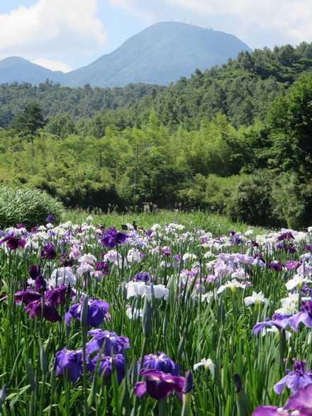 神楽女湖 1