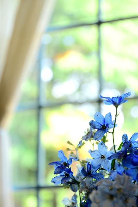 DSC_3142-001花と器のハーモニー