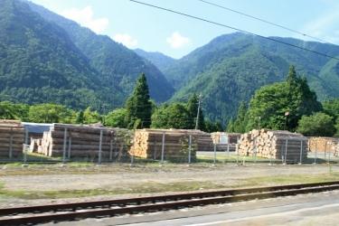 IMG_7973 材木