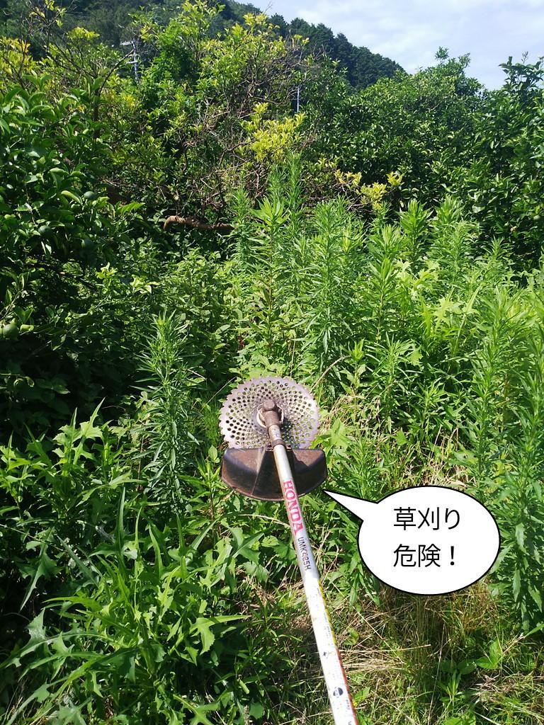 草刈り危険!