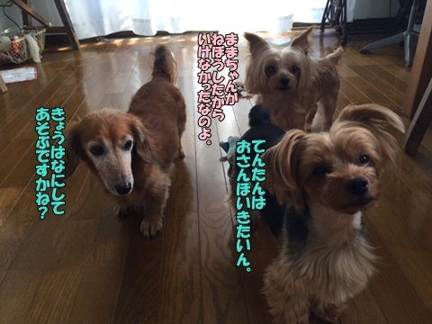image118073102.jpg