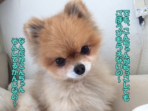 image418042803.jpg
