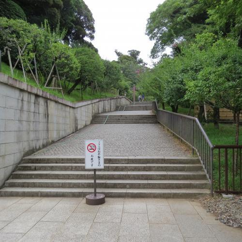 成田山公園-2