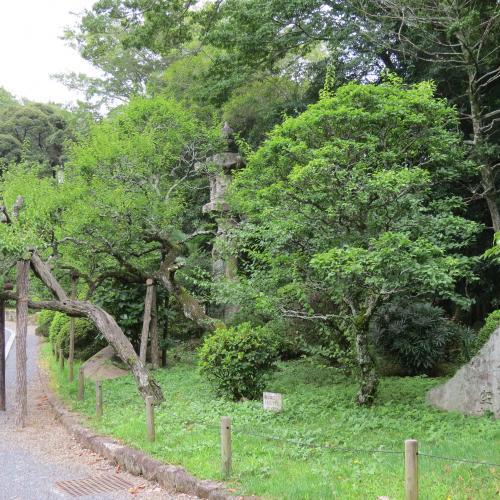 成田山公園-6