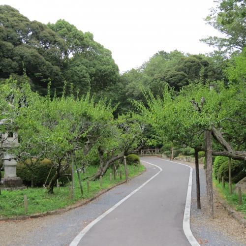 成田山公園-7