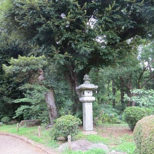 成田山公園-11