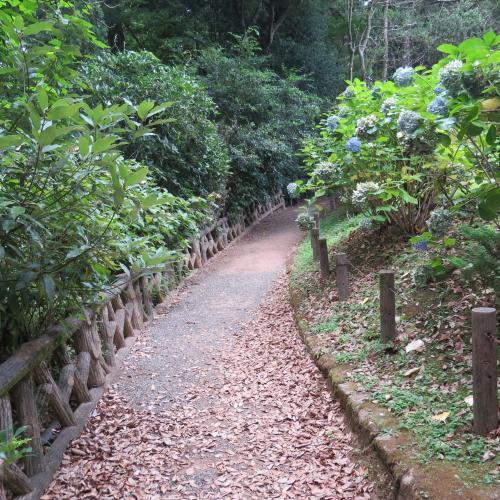 成田山公園-12