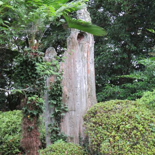 成田山公園ー33