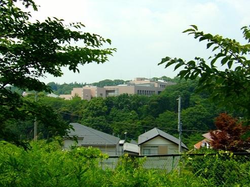 成瀬山ふるさとの森@町田市j