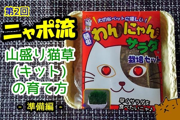 失敗しない 猫草栽培キット
