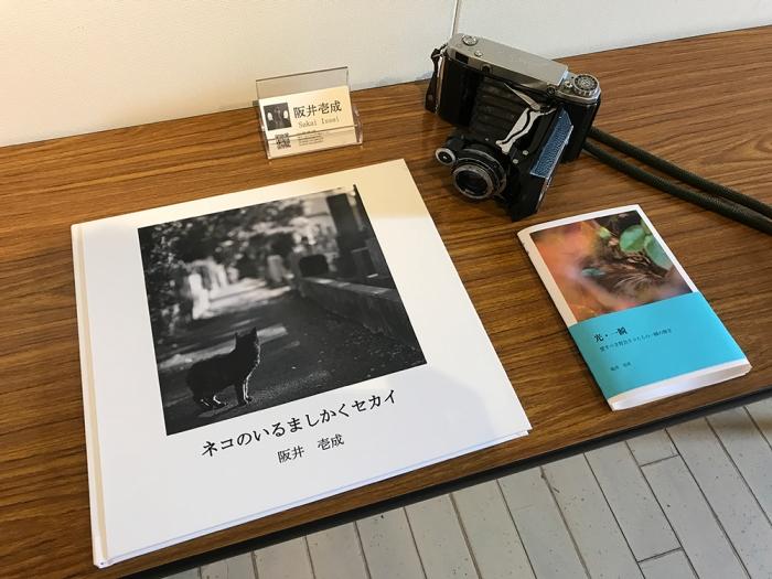 横浜赤レンガ倉庫ねこ写真展