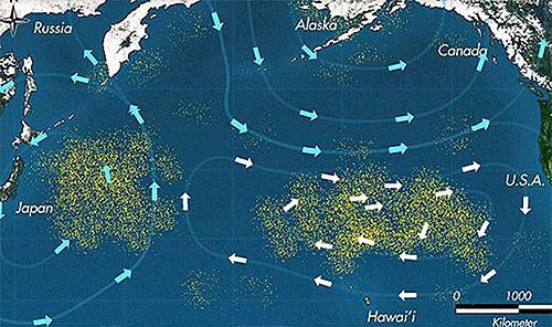太平洋ゴミベルト