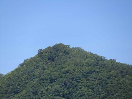 180622掃部ヶ岳 (49)掃部ヶ岳s