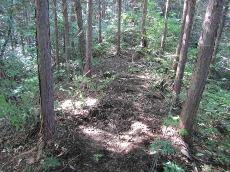 180624十二ヶ岳~小野子山 (10)s