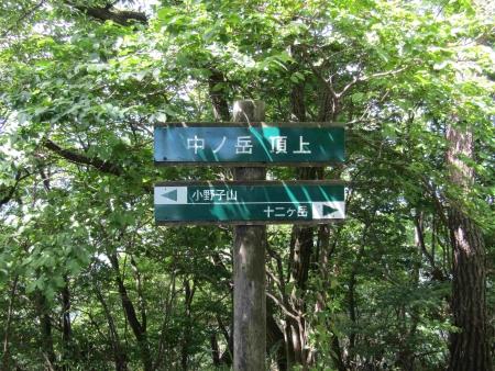 180624十二ヶ岳~小野子山 (24)s