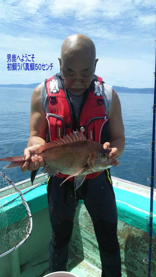 hatumadai50.jpg