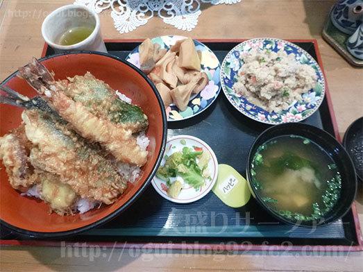 食べ放題のお惣菜とびっくり天丼013