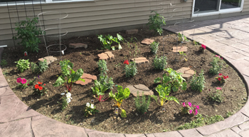 garden06041801.jpg