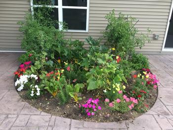 garden07251804.jpg