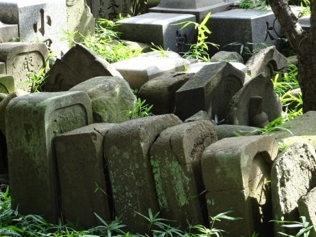 Grave5785.jpg