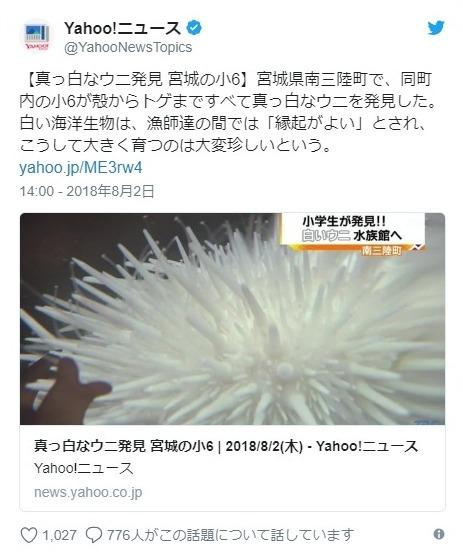 【東北】南三陸町で「真っ白なウニ」発見!専門家「珍しい」漁師「縁起が良い」
