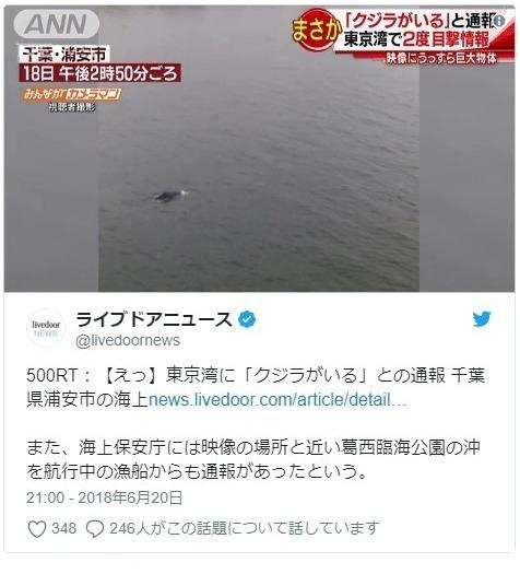 【前触れ】東京湾に15メートル程ある大きさの「クジラ」が出現!ここ数日、各地で「リュウグウノツカイ」もよく発見されていた模様