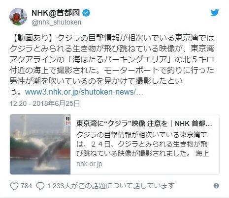 【まだいる】目撃情報が相次いでいる東京湾のクジラ…現在は海ほたる付近にいる模様