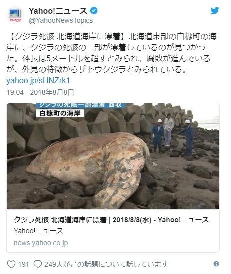 【珍しい】北海道白糠町の海岸にクジラが漂着!体長5メートル超…住民「こんなの見たことない」