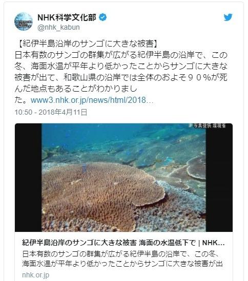 【環境省】水温低下により紀伊半島沿岸の「サンゴ」に大きな被害