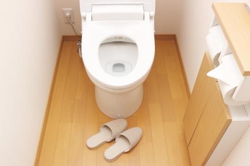 toilet6787687.jpg