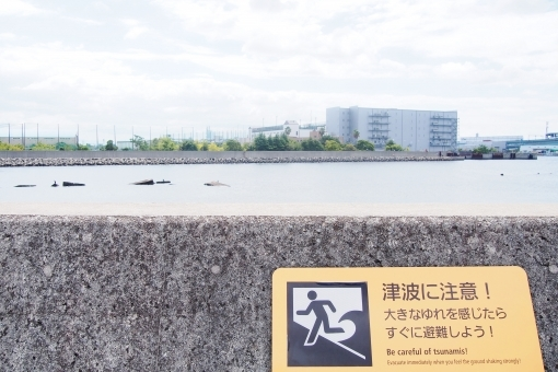 tsunami08937465.jpg