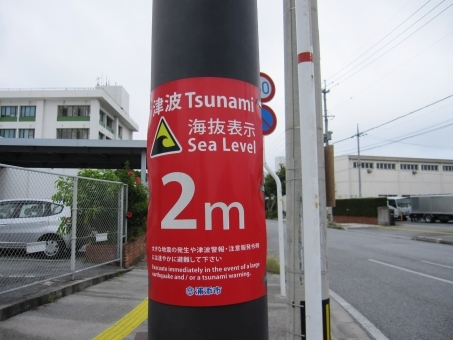 tsunami85785763.jpg