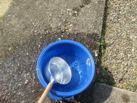 water6534354.jpg