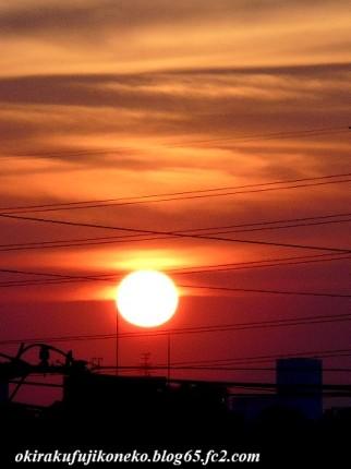 624夕陽4