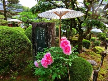 2018_Shikoku88Henro221.jpg