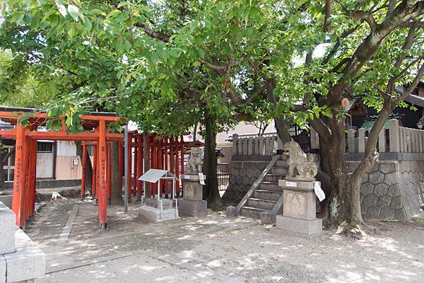 錦神社社全景