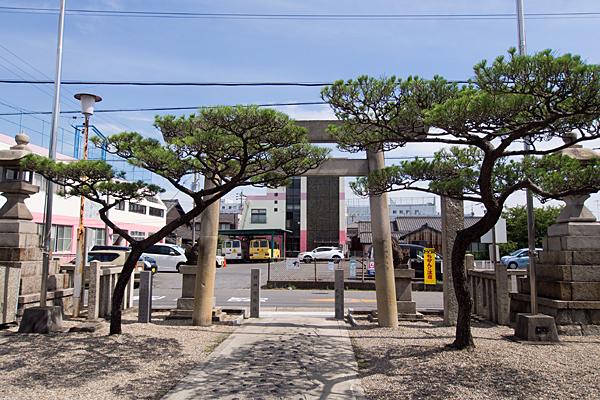 本宮町龍神社鳥居と松