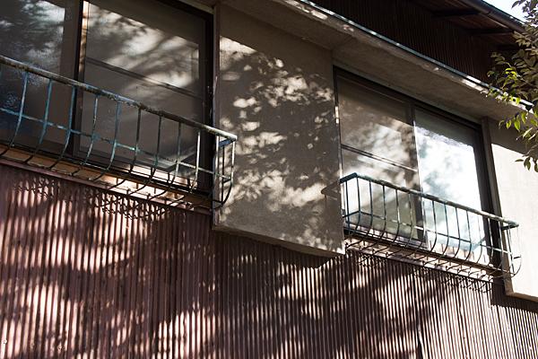 窓と木漏れ日