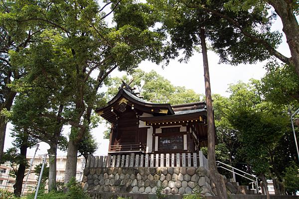 福徳町龍神社社殿横から