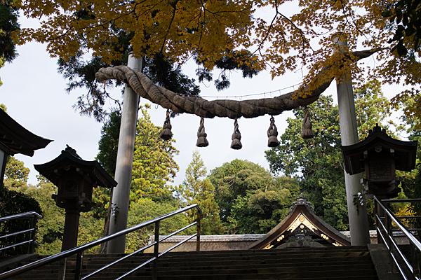 大神神社注連縄鳥居