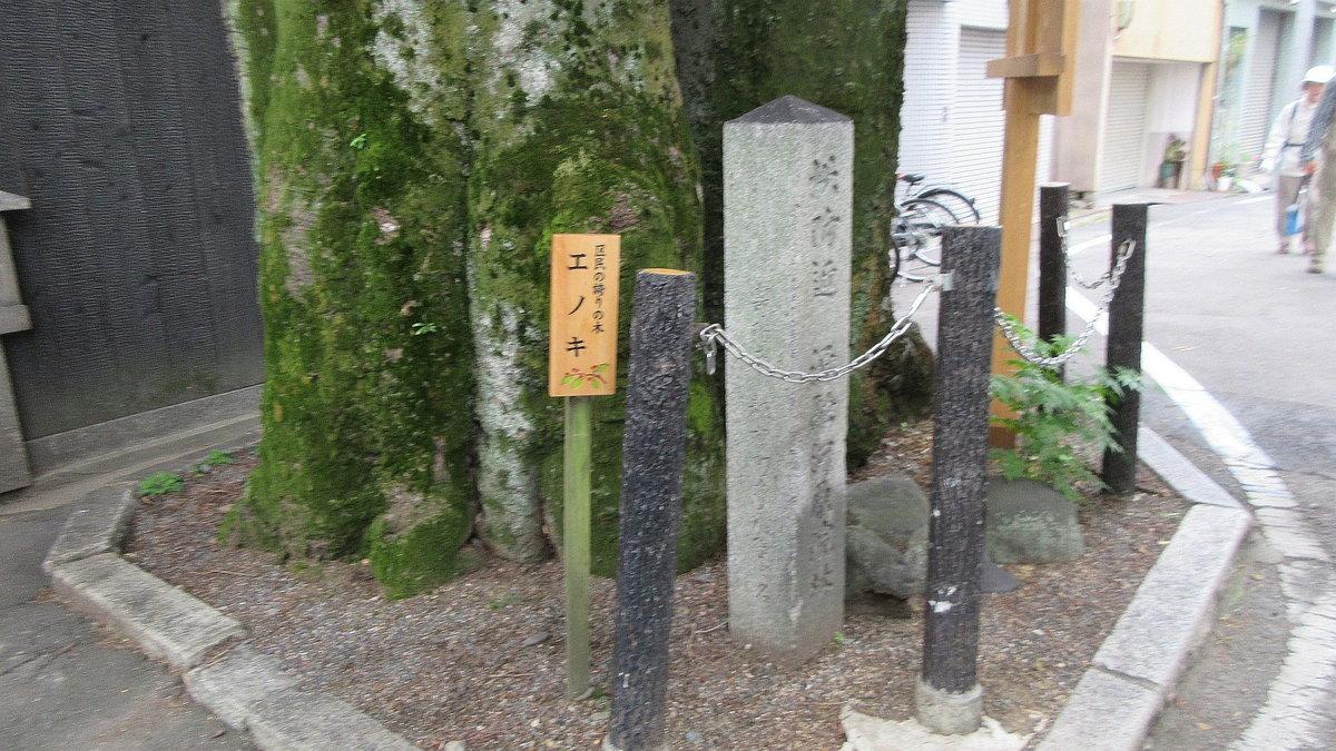 1806-04-京都-IMG_5174