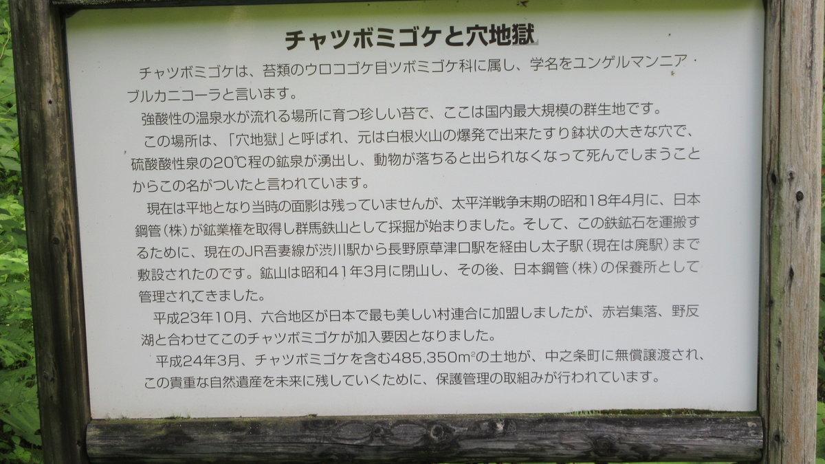 1807-14-嬬恋2日目-14-IMG_5313