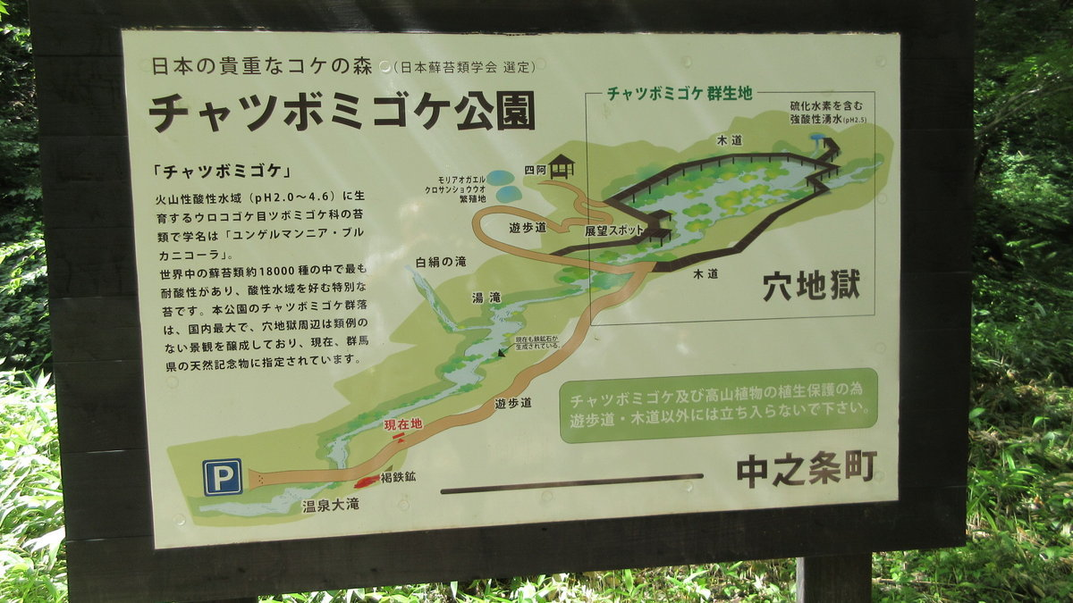 1807-05-嬬恋2日目-05-IMG_5282