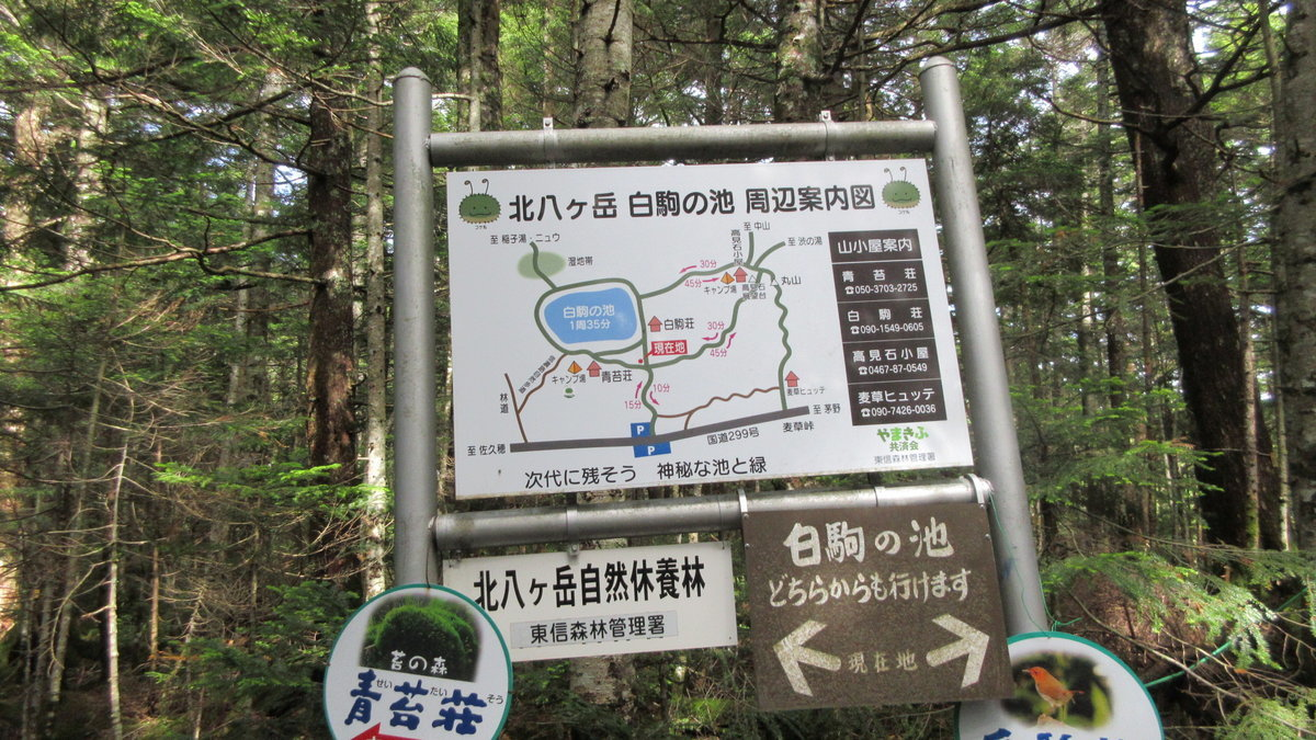 1807-13-嬬恋1日目-13-IMG_5239