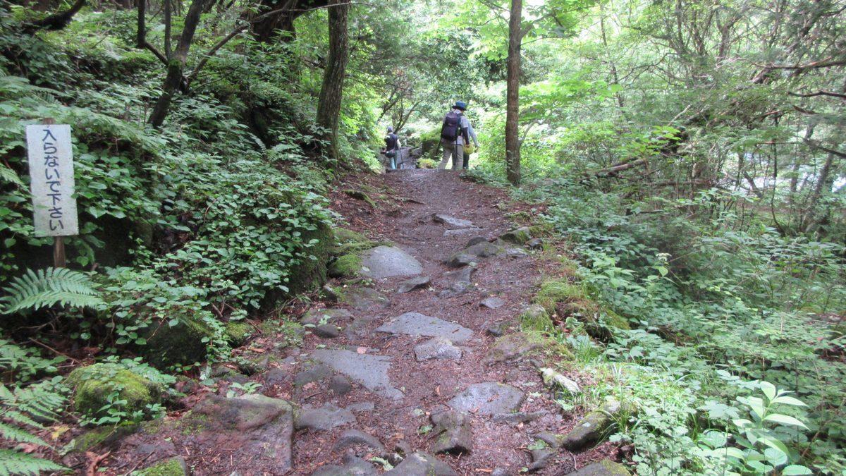 1807-04-嬬恋1日目-04-IMG_5232