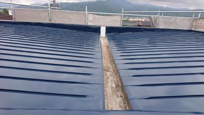 DSC_0308(400)屋根塗装